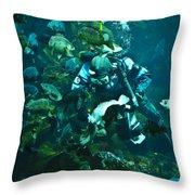 Diver Feeding Fish Throw Pillow
