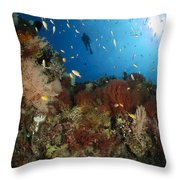 Diver Over Reef Seascape, Indonesia Throw Pillow