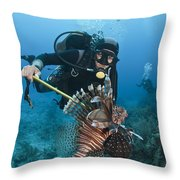 Diver Spears An Invasive Indo-pacific Throw Pillow