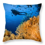 Diver Swimms Above Soft Coral, Fiji Throw Pillow