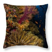 Diver Swims By Soft Corals And Crinoid Throw Pillow