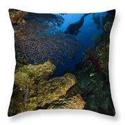 Diver Swims Over A Reef, Belize Throw Pillow