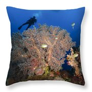 Diver Swims Over Sea Fans, Indonesia Throw Pillow