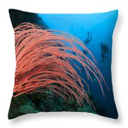 Divers And Whip Coral Throw Pillow
