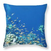 Divers Enjoy The Beauty Of The Reefs Throw Pillow