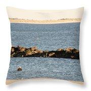 Diving Coney Island Throw Pillow