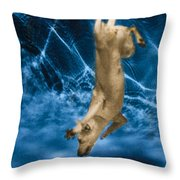 Diving Dog 2 Throw Pillow