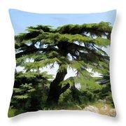 Do-00511 Cedar Forest Throw Pillow