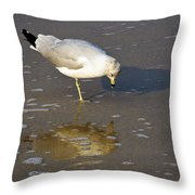 Do I Know You Throw Pillow