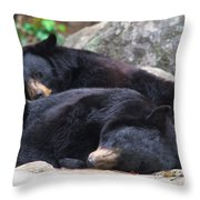 Do Not Awaken Throw Pillow
