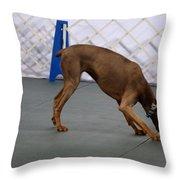 Dobie Retrieving Dumbbell Throw Pillow