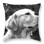 Dog Black And White Portrait Throw Pillow
