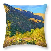 Dog Canyon Nm Oliver Lee Memorial State Park Throw Pillow