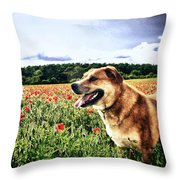 Dog In The Poppy Field Throw Pillow