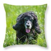 Dog On The Grass Throw Pillow
