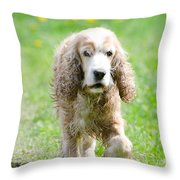 Dog On The Green Field Throw Pillow