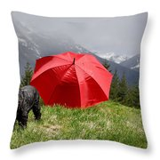 Dog On The Top Of A Mountain Throw Pillow
