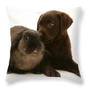 Dog Pup With Rabbit Throw Pillow by Jane Burton