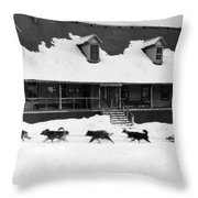 Dog Sled Throw Pillow