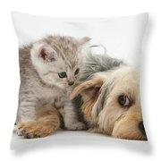 Dog Surrendering To Kitten Throw Pillow