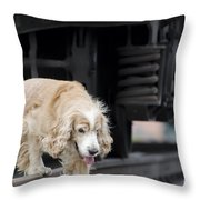 Dog Walking Under A Train Wagon Throw Pillow