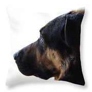Doggie Daydreams Throw Pillow
