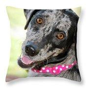 Doggone Cute Throw Pillow