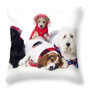 Dogs Wearing Winter Accessories Throw Pillow