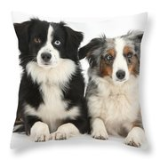 Dogs With Different-colored Eyes Throw Pillow