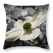 Dogwood Black And White Throw Pillow