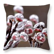 Dogwood Blooms - Sealed In Ice Throw Pillow