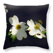 Dogwood Blossom - Beelightful Throw Pillow