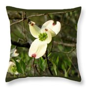 Dogwood Blossome Throw Pillow