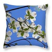 Dogwood Blossoms 2 Throw Pillow