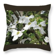 Dogwood Blossoms Throw Pillow