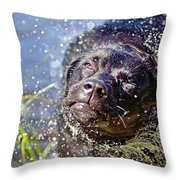 Doing The Shake Throw Pillow