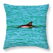 Dolphin Swimming Throw Pillow