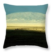 Dome Mountain Throw Pillow