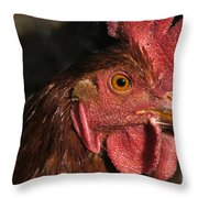 Domestic Chicken Throw Pillow