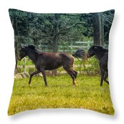 Domestic Horses Throw Pillow