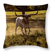 Don't Mess With Texas ..... Long Horns That Is  Throw Pillow
