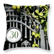 Door 30 Throw Pillow