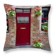 Door And Windows Throw Pillow