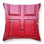 Door In Ireland 5 Throw Pillow