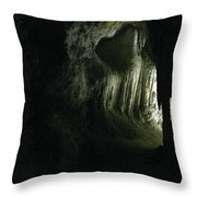 Doorway To Wonderland Throw Pillow