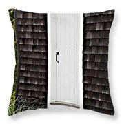 Doorway With Daisies Throw Pillow by Michelle Wiarda