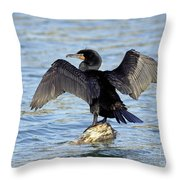 Double Crested Cormorant Wings Spread Throw Pillow