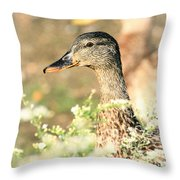 Double Duck Throw Pillow