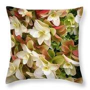 Double Hydrangeas  Throw Pillow