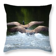 Double Landing Throw Pillow